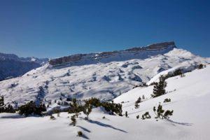 Skistadl Mittelberg | Wir im Kleinwalsertal